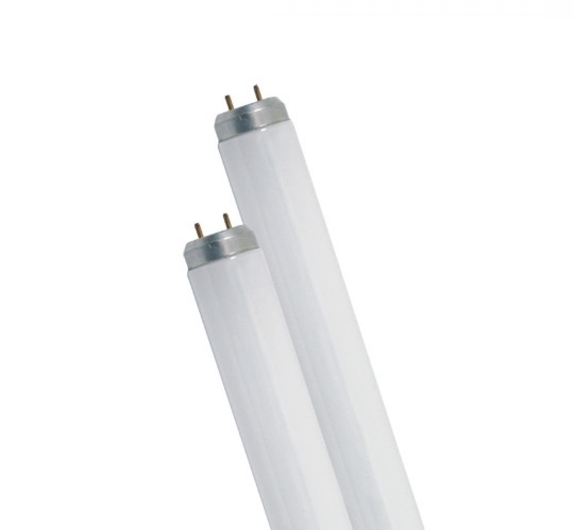 Lampada fluorescente tubular - 40W T10
