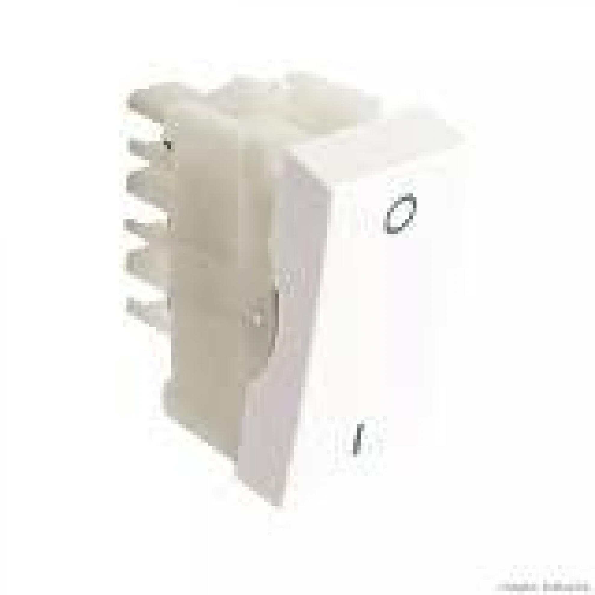 Modulo Interruptor Bip Paralelo 10A BR